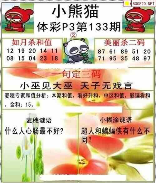 20133期体彩P3小熊猫图迷